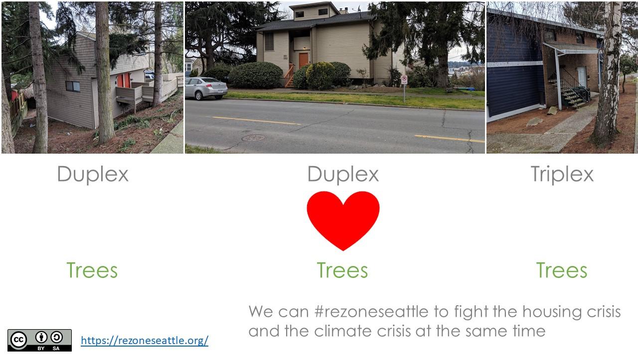 plexes_with_trees
